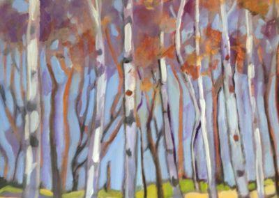 Marlene Bulas _ Beautiful Birches