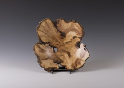 Arnold Veen - Maple Burl up